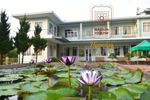 Bagua House - Homestay