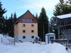 Swertia during the winter