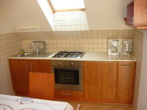 Kuchyň nebo kuchyňský kout v ubytování Kámán Vendégház