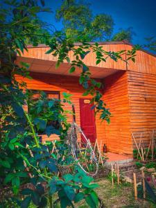 The Art - Golden Jungle House