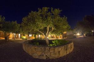 A garden outside Albergo Residenziale Menhirs