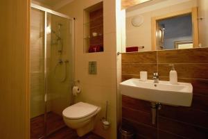 A bathroom at Apartmány Skihouse Jasná