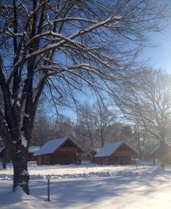 Ferienpark Arber during the winter