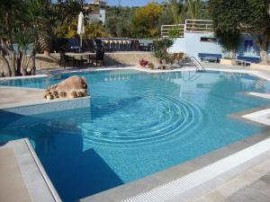 The swimming pool at or near Meraki Apartments and Studios