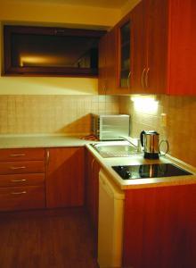 A kitchen or kitchenette at Apartmán 302 Oščadnica