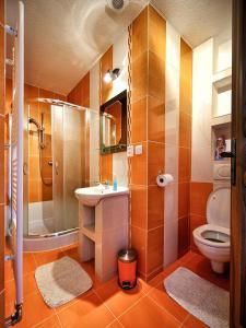 A bathroom at Villa Raj