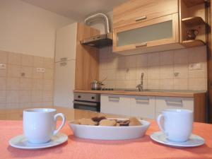 A kitchen or kitchenette at Apartments Čumar