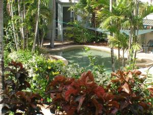 The swimming pool at or near Coral Reef Apartments