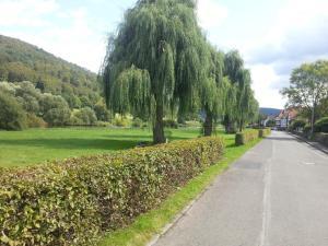 Ein Garten an der Unterkunft Weserbergland Ferienhaus
