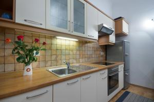 A kitchen or kitchenette at Central Apartments Tour As