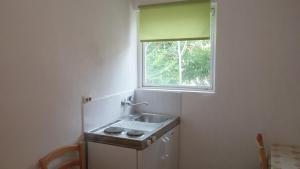 Küche/Küchenzeile in der Unterkunft Apartment Twins