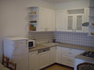 Küche/Küchenzeile in der Unterkunft Apartments Sveta Marina-Skorkoni