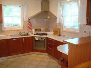 Kuhinja oz. manjša kuhinja v nastanitvi Apartment Kotnik