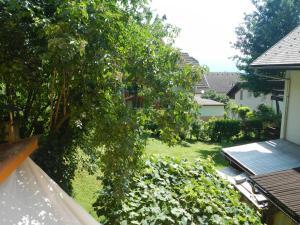 Pogled na bazen v nastanitvi Apartment Murka oz. v okolici