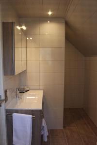 A bathroom at Appartement Badnieuweschans