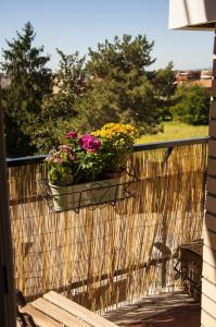 A balcony or terrace at Romagraziosa Rent