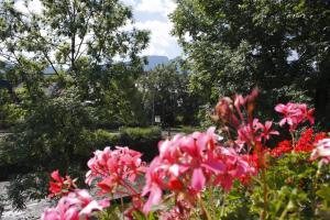 A garden outside Domek w Górach - Przy Potoku