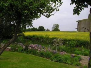 A garden outside Myrtleberry Studio