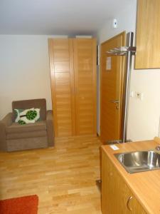 Kuhinja oz. manjša kuhinja v nastanitvi Apartment 116