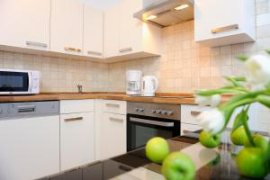 A kitchen or kitchenette at Aparthotel Christie