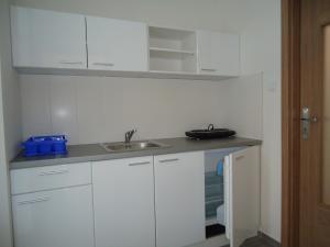 Kuchyň nebo kuchyňský kout v ubytování Apartments Valentka