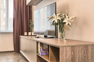 A television and/or entertainment center at Apartments Krizovnicka