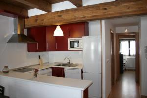 Кухня или мини-кухня в Apartamentos Panticosa