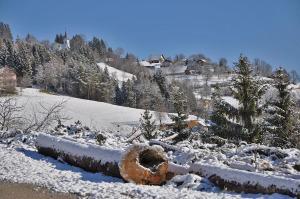 Chalet Rogla Lodge pozimi