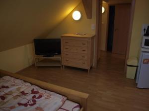 TV/Unterhaltungsangebot in der Unterkunft Apartments Viktoria Klinovec