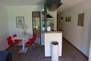 A kitchen or kitchenette at Amelander Kaap 101