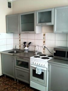 Кухня или мини-кухня в Apartment NG Na Chertygasheva