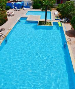 The swimming pool at or near Residence Eucalipti