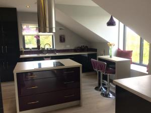A kitchen or kitchenette at Apartment looking over Lough Gill