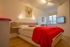 Номер в Appartement-Innsbruck