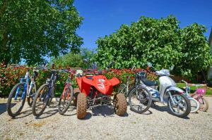 Biking at or in the surroundings of Holiday Home Gašparini