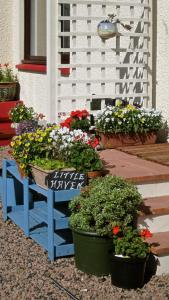 A patio or other outdoor area at Little Haven