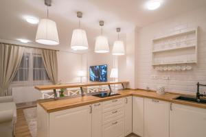 A kitchen or kitchenette at Revelton Suites Karlovy Vary