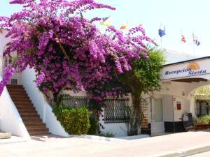The facade or entrance of Siesta Mar