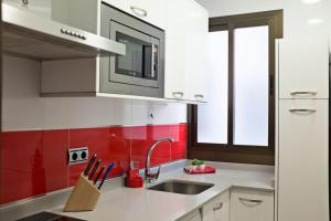 A kitchen or kitchenette at Apartamentos Madrid Plaza