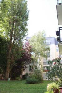 A garden outside Fun and quiet
