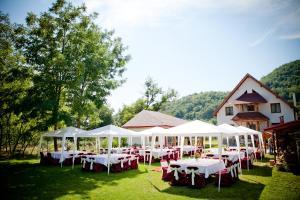 Facilități pentru petreceri la această vilă