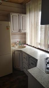 A kitchen or kitchenette at Guest House Suzdal-33