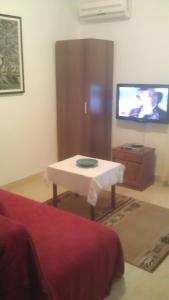 A television and/or entertainment center at Apartments Djakonovic