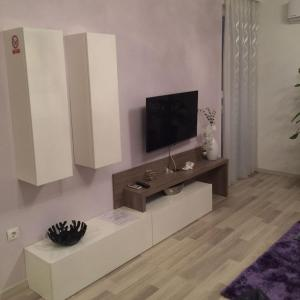 A television and/or entertainment center at Angelina Apartment