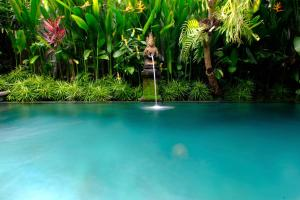 The swimming pool at or close to Prama House