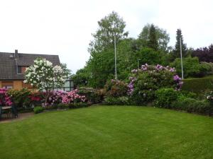 Ein Garten an der Unterkunft Haus Wiesel