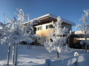 Designferienhaus im Winter