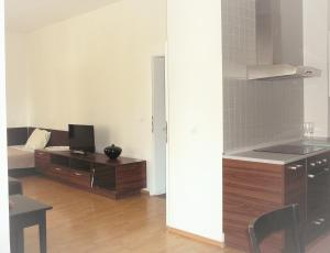 A television and/or entertainment center at Apartments Bratislava