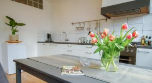 A kitchen or kitchenette at Apartment Havenstraat