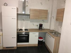 Virtuvė arba virtuvėlė apgyvendinimo įstaigoje Petrov